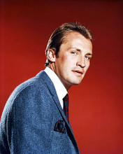 This is an image of Photograph & Poster of Roy Thinnes 292086