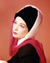 This is an image of Photograph & Poster of Shirley Maclaine 292125