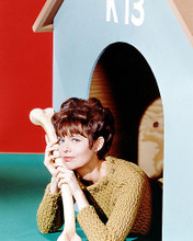 This is an image of Photograph & Poster of Barbara Feldon 292737