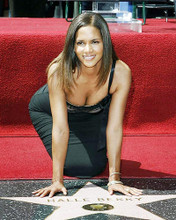 This is an image of Photograph & Poster of Halle Berry 292722