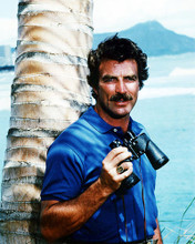 This is an image of Photograph & Poster of Tom Selleck 292810