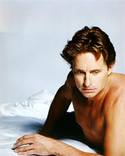 This is an image of Photograph & Poster of Michael Douglas 292817