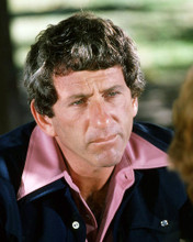 This is an image of Photograph & Poster of Barry Newman 292842