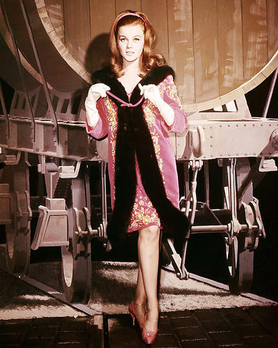 This is an image of Photograph & Poster of Ann-Margret 293022