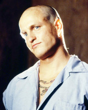 This is an image of Photograph & Poster of Woody Harrelson 293196