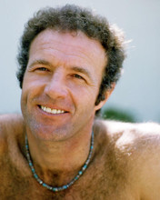 This is an image of Photograph & Poster of James Caan 293237