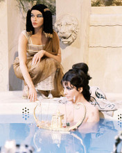 This is an image of Photograph & Poster of Elizabeth Taylor 293281