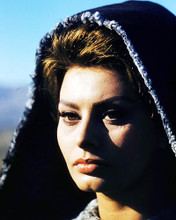 This is an image of Photograph & Poster of Sophia Loren 293356