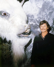 This is an image of Photograph & Poster of Charles Bronson 293490