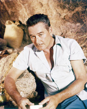 This is an image of Photograph & Poster of Errol Flynn 293524