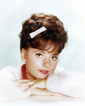 This is an image of Photograph & Poster of Dawn Wells 293577