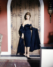 This is an image of Photograph & Poster of Cyd Charisse 293831