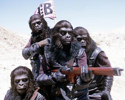 This is an image of Photograph & Poster of Planet of the Apes 293775