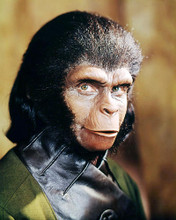 This is an image of Photograph & Poster of Planet of the Apes 293820
