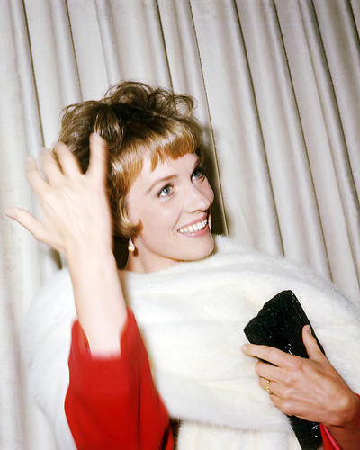 This is an image of Photograph & Poster of Julie Andrews 293822