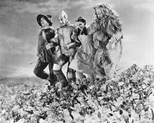 This is an image of Photograph & Poster of The Wizard of Oz 173534