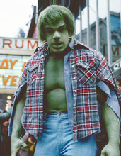 This is an image of Photograph & Poster of Lou Ferrigno 263108