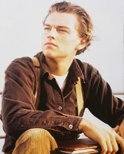 This is an image of Photograph & Poster of Leonardo Dicaprio 231398