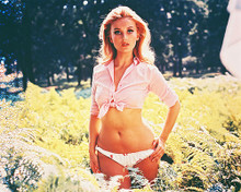 This is an image of Photograph & Poster of Barbara Bouchet 245452
