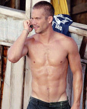 This is an image of Photograph & Poster of Paul Walker 268090