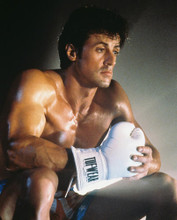 This is an image of Photograph & Poster of Sylvester Stallone 225908