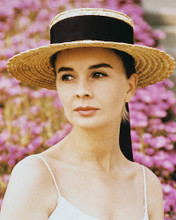 This is an image of Photograph & Poster of Jean Simmons 210054