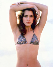 This is an image of Photograph & Poster of Brooke Shields 278257