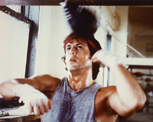 This is an image of Photograph & Poster of Sylvester Stallone 247932