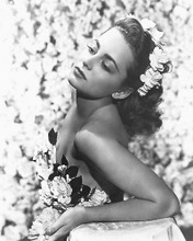 This is an image of Photograph & Poster of Olivia De Havilland 174233
