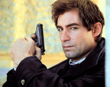 This is an image of Photograph & Poster of Timothy Dalton 280204