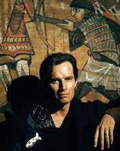 This is an image of Photograph & Poster of Charlton Heston 296546