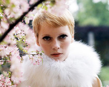 This is an image of Photograph & Poster of Mia Farrow 296607
