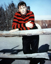 This is an image of Premium Photograph & Poster of Robert Mitchum 294529