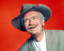 This is an image of Photograph & Poster of Buddy Ebsen 294633