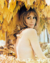 This is an image of Photograph & Poster of Suzy Kendall 294649