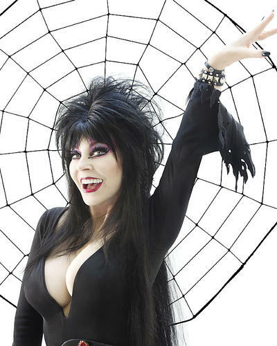 This is an image of Photograph & Poster of Elvira 294661