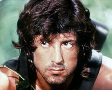 This is an image of Premium Photograph & Poster of Sylvester Stallone 296645