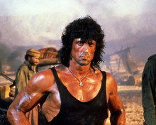 This is an image of Photograph & Poster of Sylvester Stallone 297434