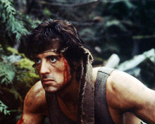 This is an image of Photograph & Poster of Sylvester Stallone 296662