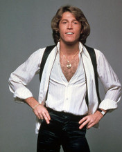 This is an image of Photograph & Poster of Andy Gibb 296677