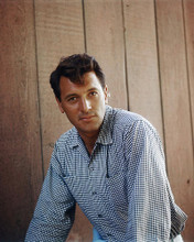 This is an image of Photograph & Poster of Rock Hudson 296718