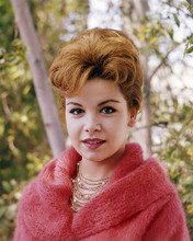This is an image of Photograph & Poster of Annette Funicello 296732