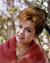 This is an image of Photograph & Poster of Annette Funicello 296735
