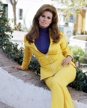 This is an image of Premium Photograph & Poster of Raquel Welch 295477