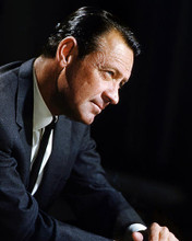 This is an image of Photograph & Poster of William Holden 296685