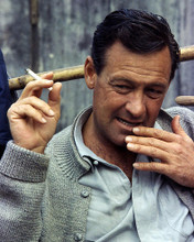 This is an image of Photograph & Poster of William Holden 296688
