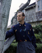 This is an image of Photograph & Poster of William Holden 296696