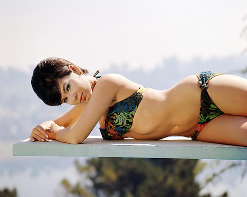 This is an image of Premium Photograph & Poster of Yvonne Craig 294834