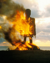 This is an image of Photograph & Poster of The Wicker Man 295437