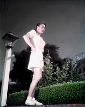 This is an image of Premium Photograph & Poster of Joan Crawford 296751